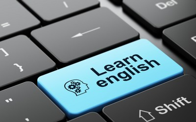 Seven Reasons Why Language Schools Should Offer Online Courses