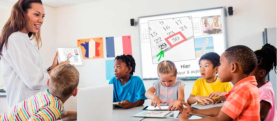 Educational language software for training centers and language schools